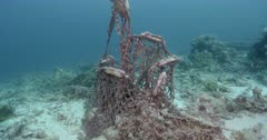 Discarded Fishing Gear on a Coral Reef