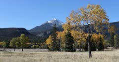 View of Rocky Mountain with aspen in fall 4K