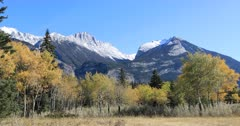 Rocky Mountain view with golden aspens 4K