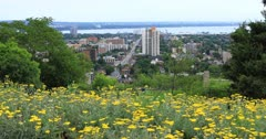 Hamilton, Canada, city center with flowers in foreground 4K