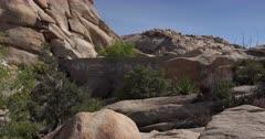 Barker Dam in Joshua Tree National Park