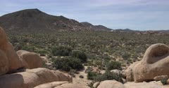 Joshua Tree National Park Scenics