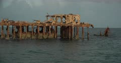 Sapona, an Icon in the Bahamas.  Ship Wrecks Along Coastal Florida and Bahamas Provide Diverse Habitat for Marine Animals