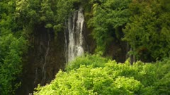 Waterfall through thick foliage - alpine