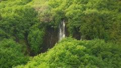 Waterfall through thick foliage, wider version - alpine