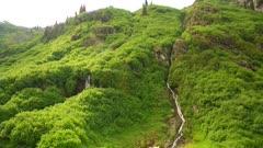 Waterfalls through thick foliage, wide, to top mountain - alpine
