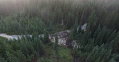 4K Aerial fly over creek and evergreens in morning mist