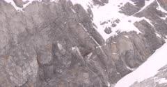 4K Raven nest on rocky ledge, wind blowing snow, Wide Shot - SLOG2