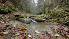 A small watercourse between steep gorges in an autumn setting