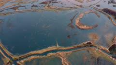drone aerial view of trumpeter swans in wetlands