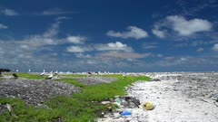 Pan of marine debris on land at Clipperton Atoll