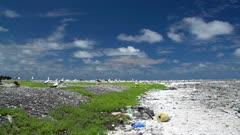 Pan of marine debris on land at Clipperton Atoll