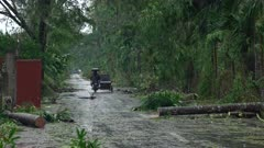 Road Cleared Of Debris In Aftermath Of Hurricane