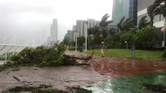 Hurricane Aftermath Debris Strewn Across Walkway