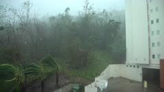 Severe Hurricane Makes Landfall With Damaging Wind And Rain