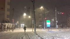 Rare Winter Snow Storm Hits Tokyo Japan