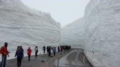 Tourists At Incredible Snow Canyon In Tateyama Mountains In Japan