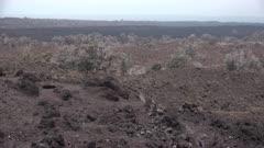 Old Lava Flow Hawaii Big Island Pan