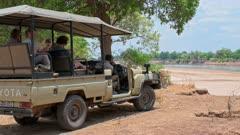 tourists watching lioness from safari vehicle, lion (Panthera leo), South Luangwa National Park, Mfuwe, Zambia, Africa