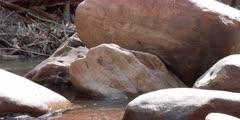 Close up shot of rocks in tropical river in Brazil