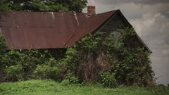 Abandoned Farm House, overgrown with vines, sits in a empty field on a perfect Midwestern Summer's Day