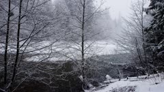 Washington State - Cascade Mountain Range - Forest Snow with River