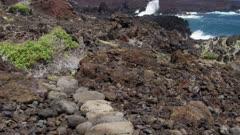 Hawaii Island -  Rocky Coast with Ancient Kings Trail