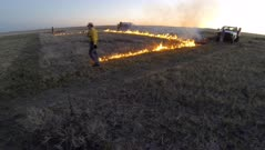 Burn crew of scientists setting prescribed fire during sunset in spring