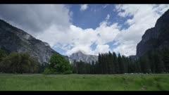 Huge meadow looking toward Half Dome, alpine trees