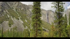 Waterfall between large conifers in valley
