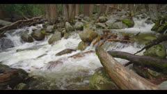Creek, fast flowing water shot in 48fps