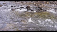 River water ripples over boulders and rocks, scenic Yosemite, 24fps