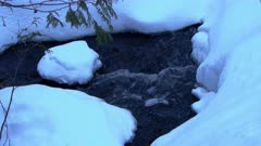 Creek Flows Under Snow Cover