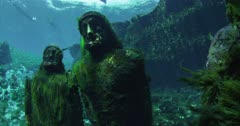 Algae covered underwater statues at Silver Springs, Florida