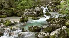Stream and mossy stones in spring forest in Slovenia, 4k