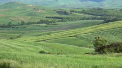 Tuscany panorama background - farmland hill fields in Italy, Europe, 4k
