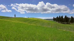 Tuscany hills panorama landscape with yellow flowers on green fields, Italy, 4k