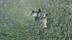 Aerial clip flying over a Cenote in the jungle on the Yucatan Peninsula in Mexico