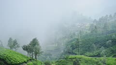 Clouds of mist rolling over the green landscape of Munnar, India - time lapse
