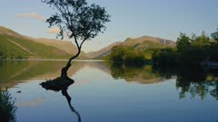 Tranquil Scenery At The Llyn Padarn Lake, with a perfect reflection of a tree in Snowdania Wales UK - aerial shot