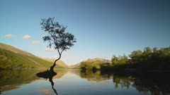 Lone silhouette tree stands proud on small island surrounded by calm lake water landscape and scenery, background with copy space and blue sky at Llyn Padarn Lake, Wales