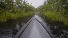Amazon rainforest view from a typical canoe on the river, Ecuador