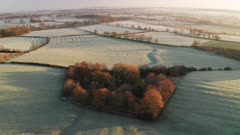 Aerial drone video of rural countryside landscape scenery with orange autumn trees and green fields in farmland on a farm with typical beautiful English woods in The Cotswolds in beautiful sunrise sunlight, England, UK