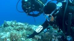 Underwater scientist