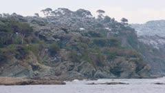 Cap Sicié - Mediterranean