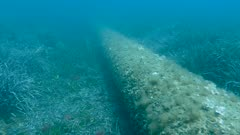 Submarine outfall - Emissaire sous-marin