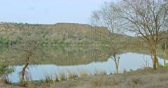 General view of Lake in Ranthambhore National Park
