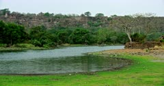 General view of Ranthambore fort and lake area