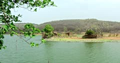Side view of Ranthambore Lake and Rajbhagh building