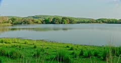 General view of Beautiful Ranthambore lake area with greenish trees.
